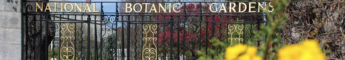 website-event-dcu-botanic-gardens